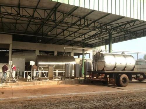Empresa utilizava leite cru rejeitado pelas indústrias para fabricar queijo (Foto: Marjuliê Martini/Divulgação)