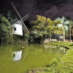 Parque Moinhos de Vento (Foto: Joel Vargas/PMPA)