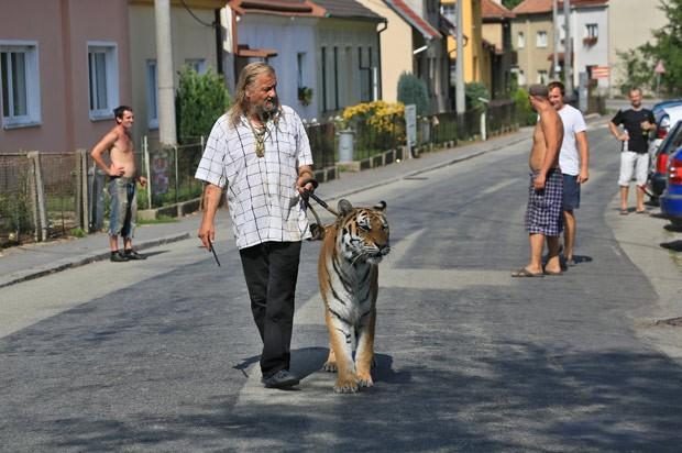 image Passeando na rua walking in the street