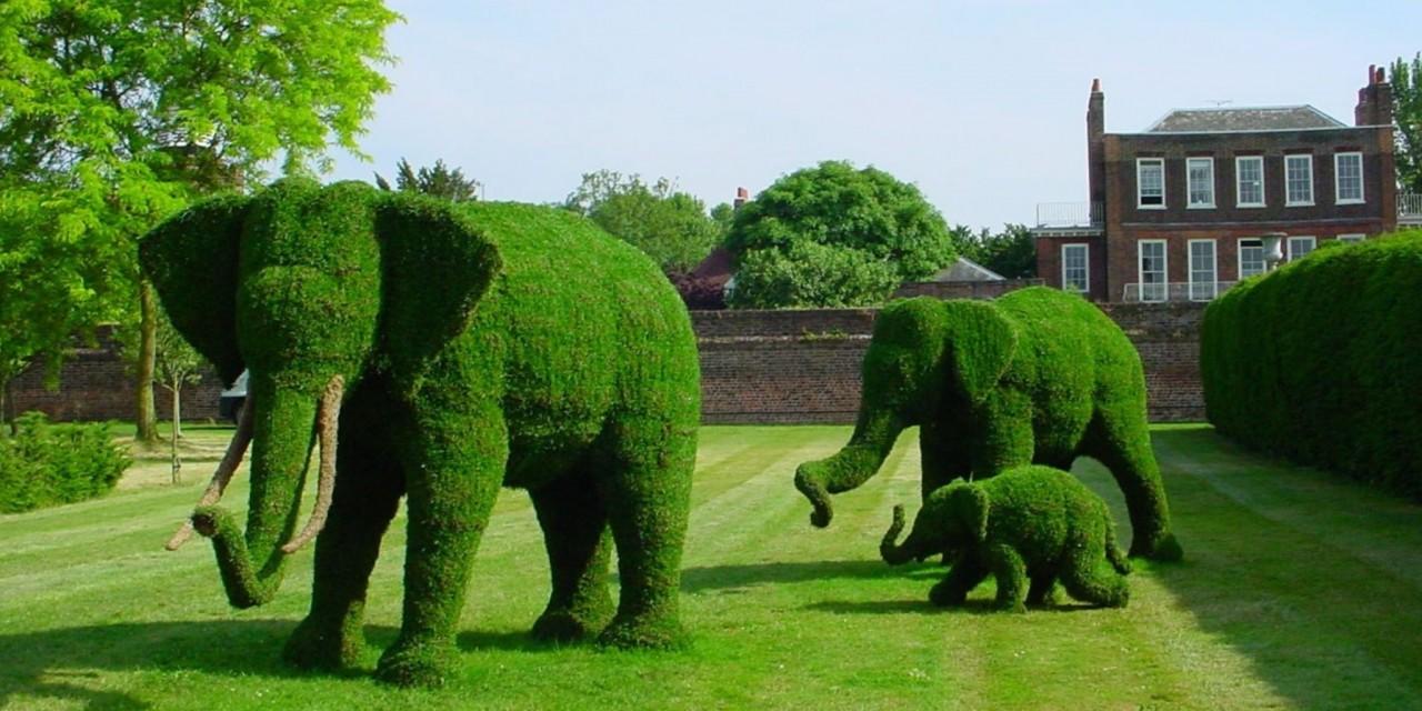O par de elefantes florais, uma cortesia da iniciativa Animal Ark. (Foto: Pedro Antonio Heinrich/especial)