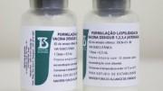Vacina contra a dengue foi desenvolvida pelo Instituto Butantan em parceria com instituto americano. (foto: reprodução)