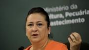 Kátia Abreu  é amiga pessoal e uma das principais aliadas políticas de Dilma. (Foto: Wilson Dias/Agência Brasil)