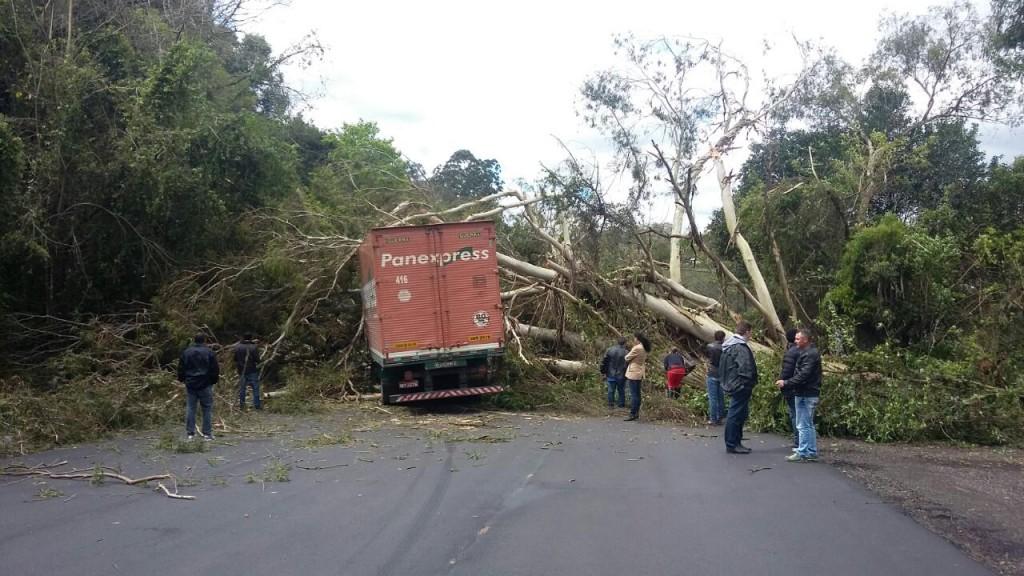O acidente foi registrado no quilômetro 205 da rodovia. (Foto: PRF/Divulgação)