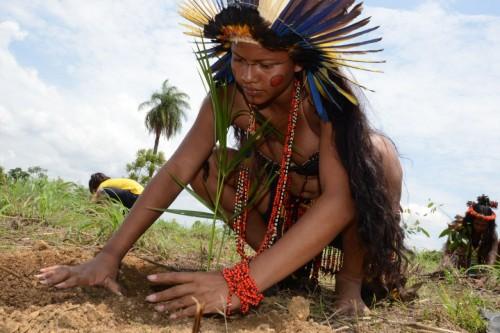 Reservas indígenas: garantia de proteção à natureza. (Foto: Valério Zelaya/Divulgação)