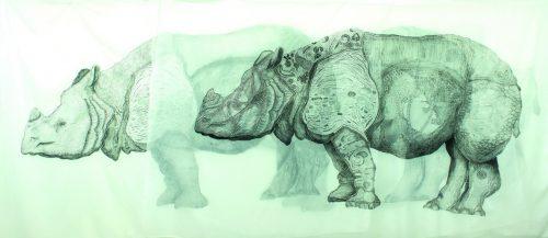 """No detalhe: as variações para um rinoceronte, abordada no livro """"Rhinocerus"""". (Foto: Divulgação)"""
