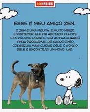 Aliada a temática do Snoopy, campanha em vigor nos restaurantes da Rede, Habib's lança ação que incentiva a adoção de cães abandonados.