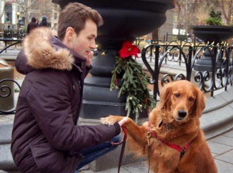 Loubie vive em Nova York com seu dono. (Foto: Reprodução/Instagram)