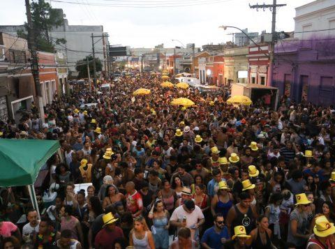 Blocos e foliões estarão na Cidade Baixa e no Parque Marinha (Foto: Luciano Lanes/PMPA)