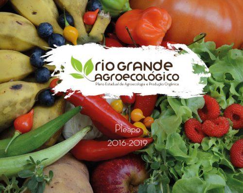 Rio Grande do Sul é o primeiro Estado a contar com Plano Estadual de Agroecologia e Produção Orgânica (Foto: Divulgação)