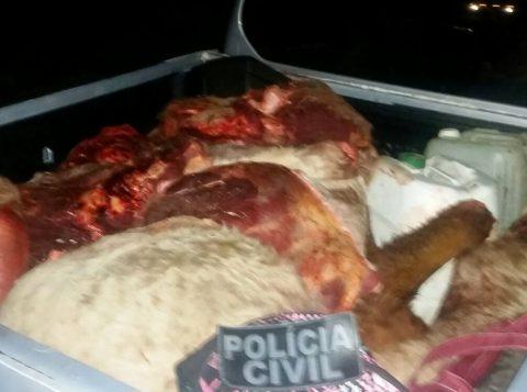 Carne era transportada em um veículo (Foto: Polícia Civil/Divulgação)