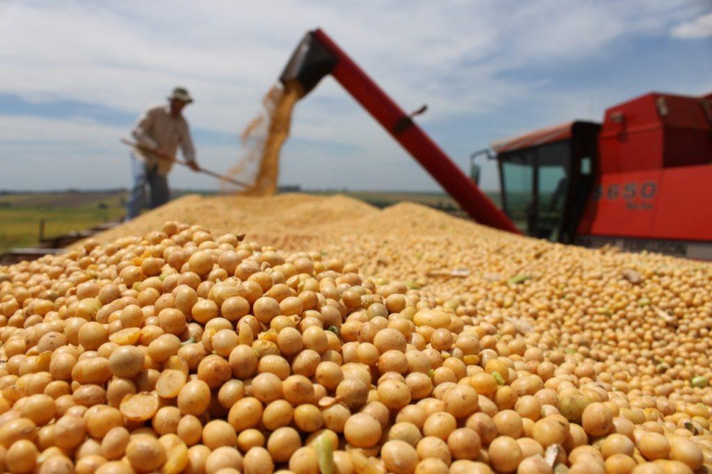 A soja foi um dos cinco principais setores exportadores do agronegócio em março. (Foto: Abr)