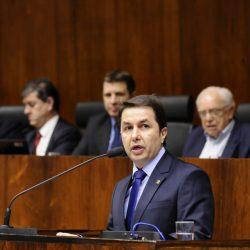 O deputado estadual Sérgio Turra (Foto: Reprodução)