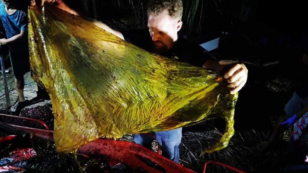 4bc14eeded8 Baleia é encontrada morta nas Filipinas com 40 kg de plástico no estômago