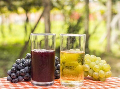 Comercialização de sucos de uva cresce mais de 40% no Brasil