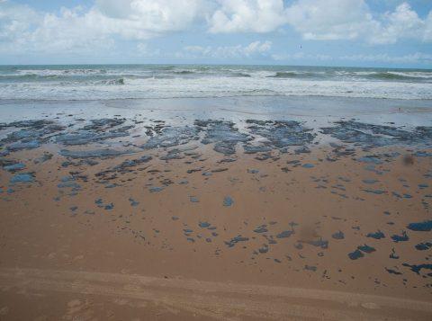Quase 200 toneladas de óleo foram recolhidas nas praias do Nordeste