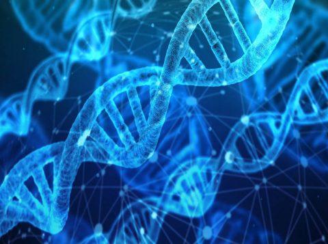 Nova técnica de edição de DNA poderá curar até 89% das doenças genéticas no futuro