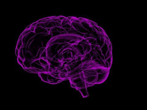 O nível de comunicação cérebro-cérebro — II Parte