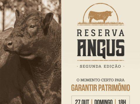 Leilão Reserva Angus oferta trio PC destaque na Expointer e na Expofeira de Pelotas (RS)