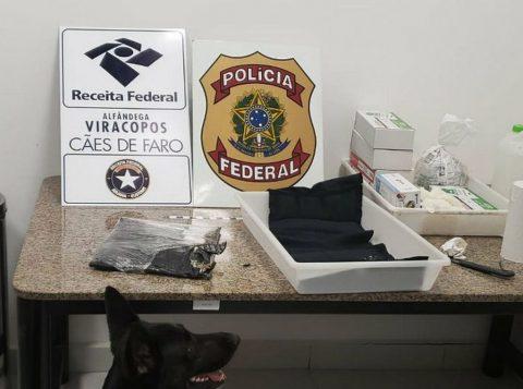 As apreensões de cocaína em portos brasileiros cresceram 50% este ano, disse a Receita Federal