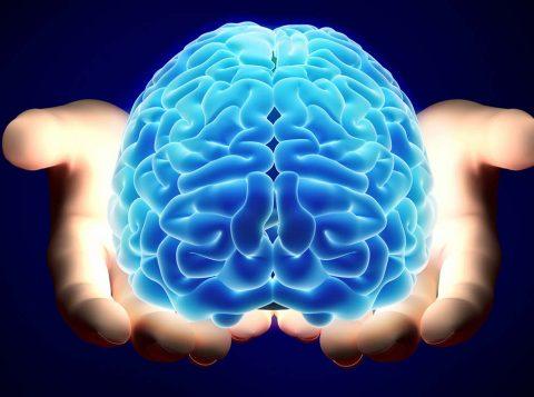 Veja o que se saber sobre o funcionamento da memória