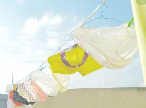 Ladrão de calcinhas ataca varais em Minas Gerais e é preso com mais de mil peças; ele usava um dos modelos