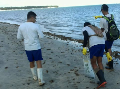 Pesquisadores apontam outro navio suspeito pelo vazamento de óleo no litoral do Nordeste