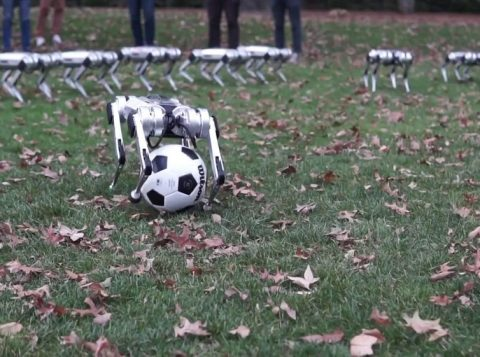 Conheça os indestrutíveis robôs do Instituto de Tecnologia de Massachussetts capazes de dar saltos mortais e jogar futebol