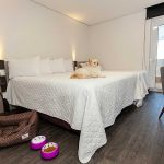 HOTEL Travel Inn Axten Caxias do Sul pet